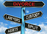 Family Law and Domestic