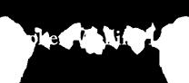 Choken Welling LLP Logo